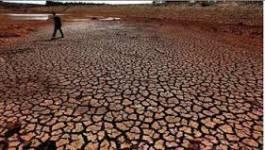 Climat : l'ONU au pied du mur