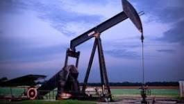 La baisse du cours des hydrocarbures et ses impacts sur les pays mono-exportateurs