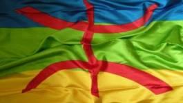 Pour la reconnaissance officielle de la langue amazighe dans la Constitution algérienne