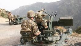 L'armée élimine cinq terroristes à Lakhdaria