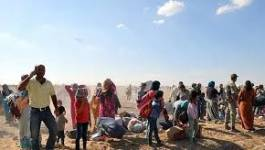 Turquie : des combattants kurdes syriens en grève de la faim