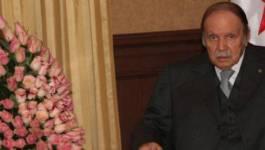 Clonage de Bouteflika pour un cinquième mandat