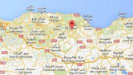 Trois terroristes islamistes tués par l'armée en Kabylie