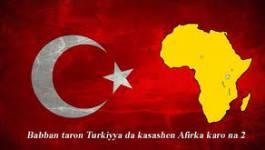 Quelles perspectives pour le sommet Afrique-Turquie ?