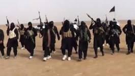 Plusieurs chefs du groupe Etat islamique tués dans des frappes aériennes