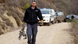 Echange de tirs à la frontière israélo-libanaise
