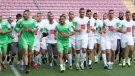 CAN-2015 : 21 sur les 23 joueurs de l'EN d'Algérie évoluent à l'étranger