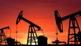 Le baril de pétrole chute sous les 55 dollars à New York