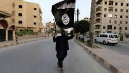 Tunisie : des djihadistes revendiquent l'assassinat de Chokri Belaïd et Mohamed Brahimi