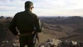 Important coup de filet des unités de l'ANP à El Oued