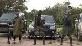 Boko Haram enlève 80 Camerounais, renforts tchadiens