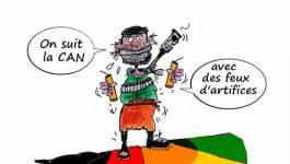 L'organisation terroriste Daech en Afrique !