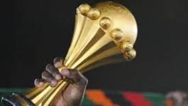 CAN 2017: l'Egypte retire sa candidature, l'Algérie en favorite
