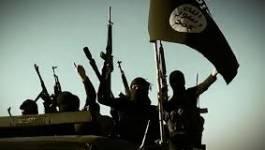 L'Etat islamique exhibe des peshmergas dans des cages en Irak