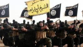 Daech affirme avoir décapité des chrétiens égyptiens en Libye