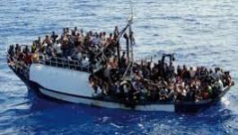 Plus de 1.000 immigrés sauvés en mer entre Lampedusa et la Libye
