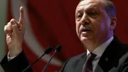 Deux caricaturistes condamnés à onze mois de prison en Turquie