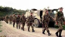 Trois terroristes abattus par l'armée à Hammam Righa