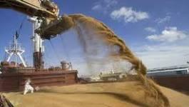 Hausse de plus de 17% des importations de céréales au 1er trimestre