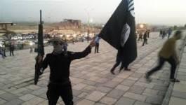Le groupe Etat islamique prend le contrôle d'une grande raffinerie d'Irak