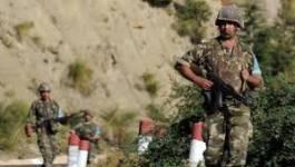 25 terroristes abattus par l'armée nationale à Bouira