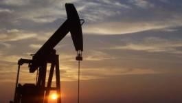 Le pétrole finit en baisse devant la surabondance persistante