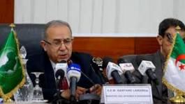 Conseil d'Association UE-Algérie : les ONG mettent la pression