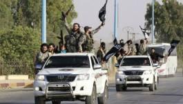 Les axes algériens de la lutte politique contre Daech