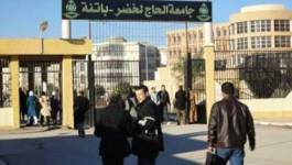 Batna : l'Université Hadj-Lakhdar inaugure un 2e laboratoire de dendrochronologie