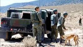 Tunisie: trois gendarmes, un jihadiste armé tués dans des combats