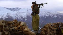 La Turquie vise l'EI, mais tue les Kurdes