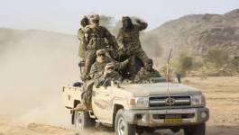 Opération de ratissage de l'armée tchadienne contre Boko Haram sur le lac Tchad