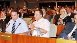 Les députés du FFS interpellés pour l'ouverture d'un département de tamazight à Setif