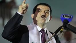 Qui en Algérie, pour sauver le tourisme national ?