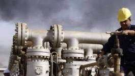 La baisse du cours des hydrocarbures et les 7 plaies de l'économie algérienne