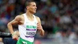 Mondiaux d'athlétisme à Pékin : L'Algérien Taoufik Makhloufi en demi-finales du 1500m