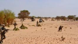 L'ANP déjoue une énième tentative d'introduction d'armes à feu par le sud