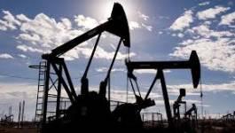 L'Opep s'attend à une hausse de la demande pétrolière en 2015
