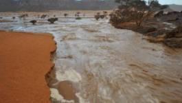 Les pluies diluviennes font 16 morts à Tamanrasset