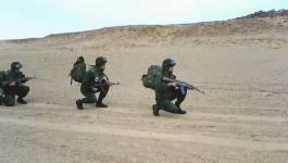 Cinq narcotrafiquants neutralisés près de Touggourt, annonce le ministère de la Défense