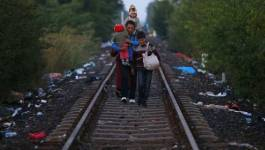 La police hongroise ferme le principal passage pour les migrants à la frontière serbe