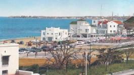 La nomenklatura algérienne et sa provocante ostentation