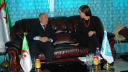Une délégation de l'ONU pour le développement industriel en visite à Batna