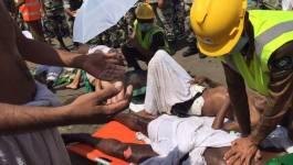 43 hadjis algériens sont morts dans la bousculade de la Mecque