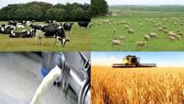 Batna : les agriculteurs s'assurent peu contre les intempéries
