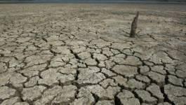 Réchauffement climatique : pourquoi ne faut-il rien attendre de la COP 21
