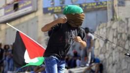 Trois Palestiniens tués à Hébron et Jérusalem-Est