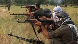 Vingt-huit membres du PKK tués dans des raids de l'aviation turque