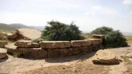 Ichouqan, la ville numide et ses milliers de tombeaux mégalithiques