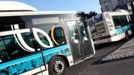 La conduite anarchique des bus met sous tension le centre-ville de Batna